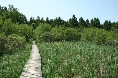 Marshlands Conservation Area