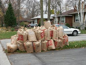photo of big pile of yard waste bags