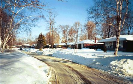 Photo of our street, January 17, 1999